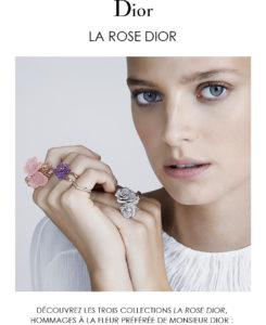 La Rose Dior, nouvelles interprétations poétiques