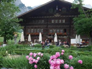 Voyage en terre Suisse : découverte des 13 plantes de Ricola