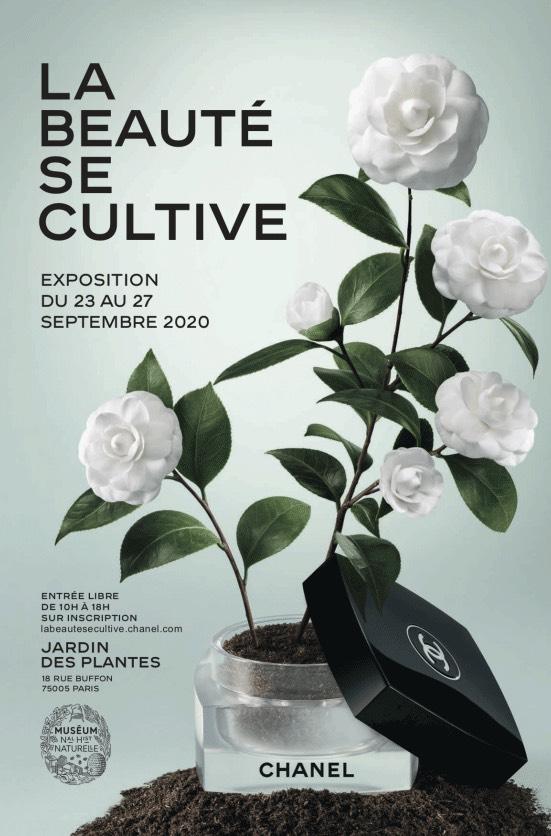Jardin des Plantes : exposition Chanel « La Beauté se cultive »