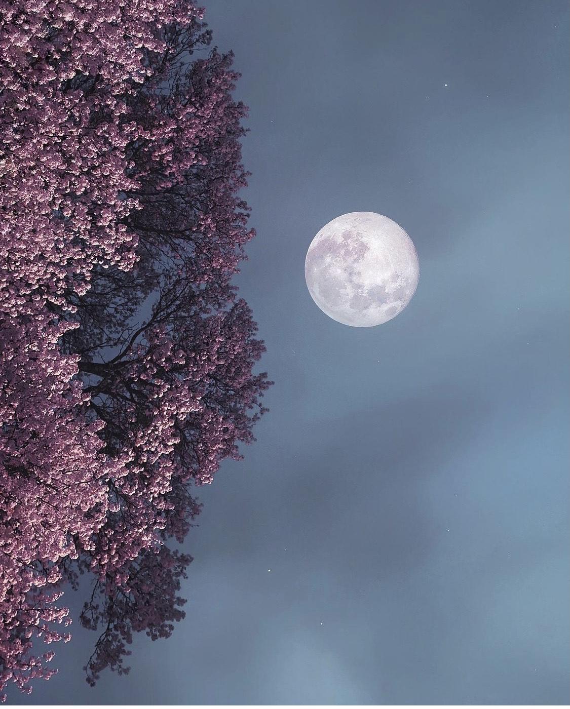 La Pleine Lune en Verseau du 24 juillet : J'ose accepter le changement avec Liberté